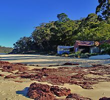 Pambula Boatsheds by tathrapix