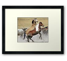 Graceful and Powerful Framed Print