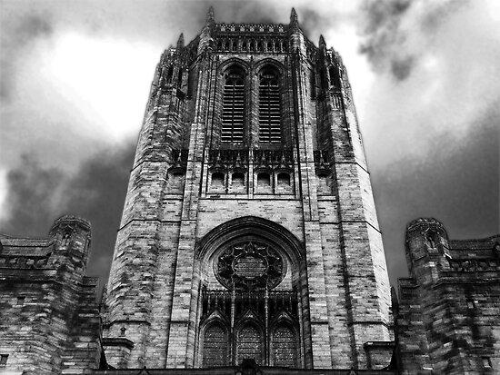 Basilica by Pinhead Industries