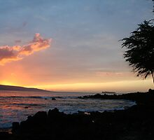 Makena Beach Maui by Ryan Nowell