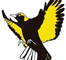 Regent Bowerbird by Toby Dunan