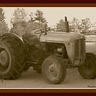  MASSEY FERGUSON 35 DIESEL by Madeline M  Allen