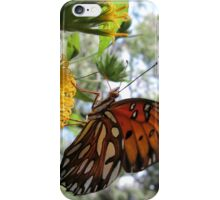 Gulf Fritillary iPhone Case/Skin
