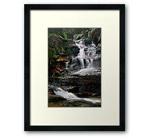 The Journey - Leura Cascades, Blue Mountains, NSW Framed Print