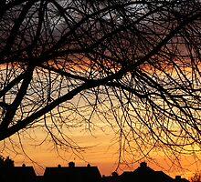 Winter Sunset by fenster