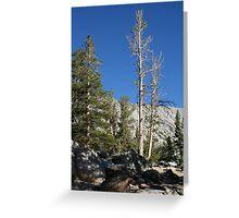 Mammoth Lakes 3 Greeting Card