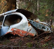 A Hunk Of Junk by vdell