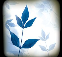 Blue Leaf by Bianca Stanton