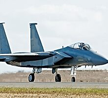 F-15 Taxiing by Nathan T