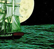 Moonlit Destiny by Madeline M  Allen