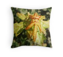 Birth of a maple leaf Throw Pillow