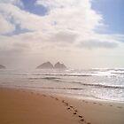 Footprints by James Stevens