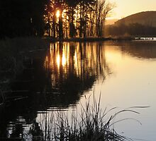 Sunset on the Lake by Tim Coleman