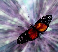 Beating Wings by Deri Dority