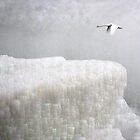 Flight over white city by Bluesrose