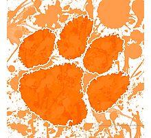 Go Tigers! Photographic Print