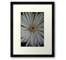 Unnamed08 Framed Print