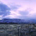 Sandia Snow by Estevan Montoya