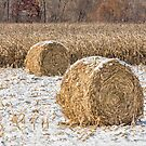 Snowy Cornstalk Bales by Kenneth Keifer
