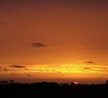 Glow of the Setting Sun by Craig Watson