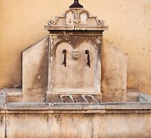 The Rustic Fountain by curiouscat