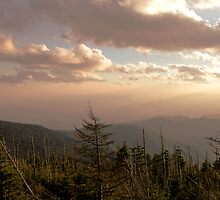 Clingman's Dome  by shotzbyjay