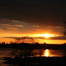 Flooding Sunset --- Beauty & Terror by Madeline M  Allen