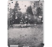 Spring Sleet iPad Case/Skin