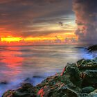 Storms Of The Gulf by John E Adams