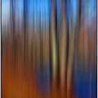 Floodplain Forest Abstract by Wayne King