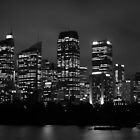 C.B.D SYDNEY AT NIGHT  by chrisblackwell29