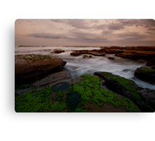 Bar Beach Rock Platform 8 Canvas Print