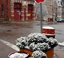 Stop n Snow by visualsplat