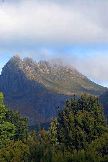 Wilderness Fantasy - Cradle Mountain National Park, Tasmania, Australia by Philip Johnson