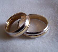 Wedding bands.  by ccrcats