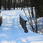 Footbridge to the Lake in Park Voyageur by TerriRiver