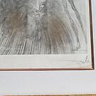 Salvador Dali's original etching comes with a certificate of authenticity by murochka13