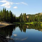Northwest Passage Beach, Payette River by Janet Houlihan