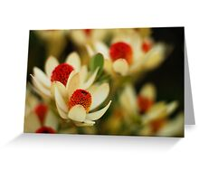 native flowers Greeting Card