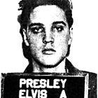 Elvis Mugshot by GilbertValenz