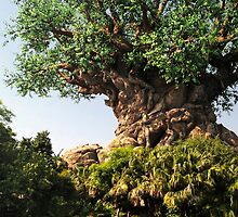 Tree of Life by zmayer