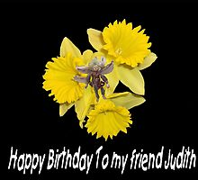 Hapy Birthday Judith by hanne