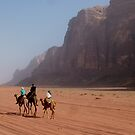 Camels of the desert by Matthew Owen