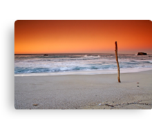Sticking out! Canvas Print