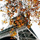 Autumn Paris by TriggerHappy