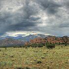 Outcropping Panorama by Scott Ingram