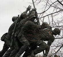 Iwo Jima another view by Nicki Fellenzer