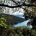 A Peek at Keuka Lake by Cheri Perry