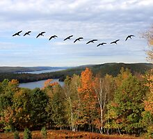 Autumn Intensity at Quabbin Reservoir by SummerJade
