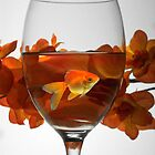 cheers!  by Diana Calvario